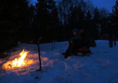 Belle soirée en bordure de forêt