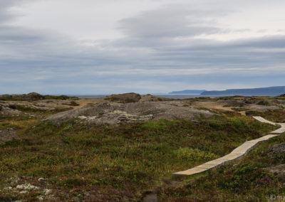 Randonnée dans la lande en direction du canyon de Jökulsa