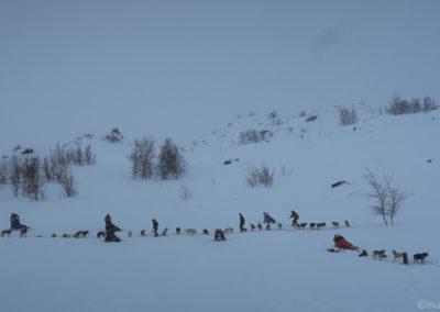 Les mushers se préparent à Unna Allakas