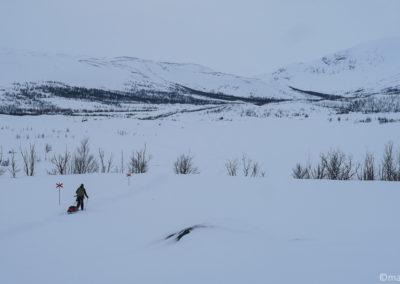 On remonte la vallée Gamaeatnu Kamajakka en skis et pulka