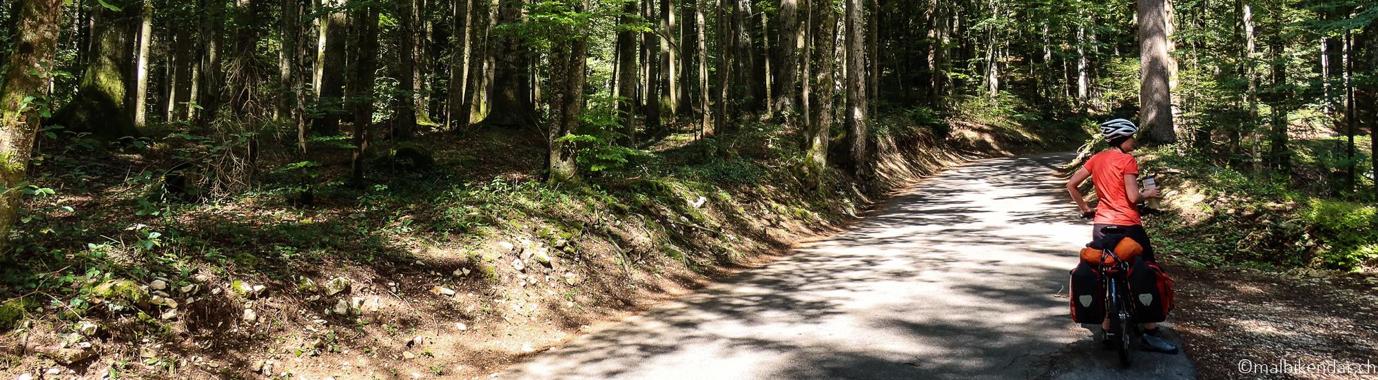 Jura à vélo - la montée vers Rothel